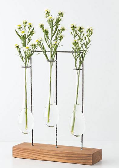 Test Tube Vase Archives The Frugal Materialist The Frugal